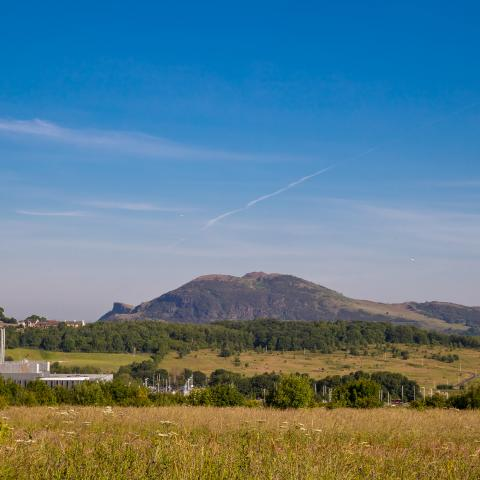 a view from Manor Wood, the new Cruden Homes' development  at Edmonstone, Edinburgh which is launching in August.